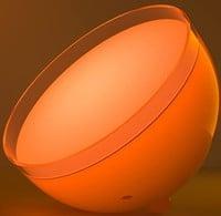 Govee Light